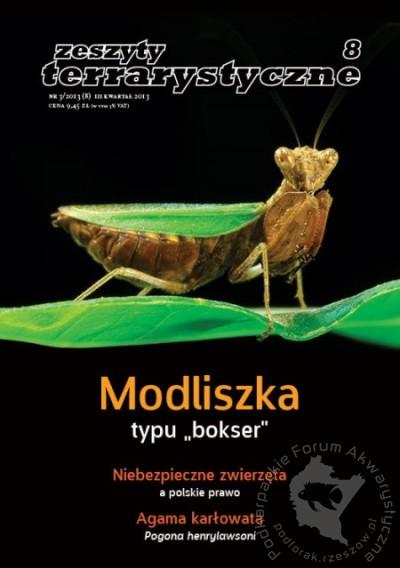 WIĘŹ 32013 by Towarzystwo WIĘŹ issuu